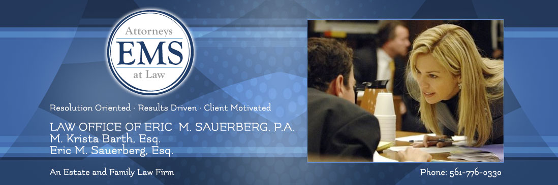Law Offices of Eric Sauerberg, P.A.
